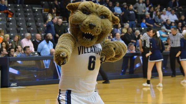 College Sports: Wildcat Mascots | High Five