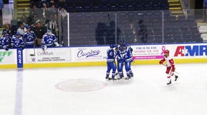 College Hockey: Top Five Plays