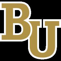 Bethel University (Minnesota)