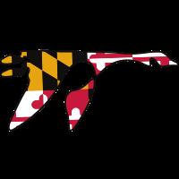 Washington College (Maryland)